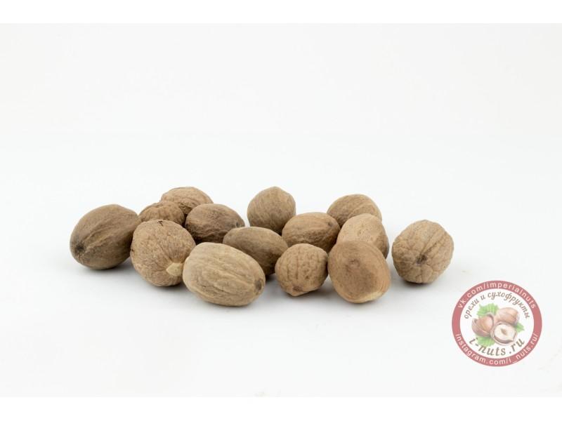 Мускатный орех целый (50 грамм)